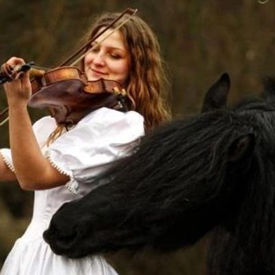 violin rentals, viola rental,cello rentals, bass rentals,music store,violin shop,rococo violin shop