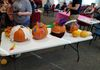 Back view of all pumpkins