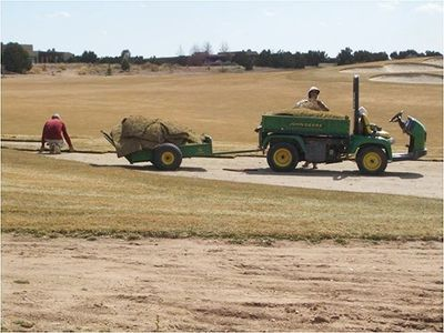Sod in rough was replaced with non-irrigated native vegetation.
