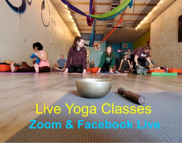 We are now offering our classes online!