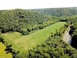 Mohican River Auction