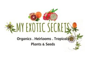 My Exotic Secrets