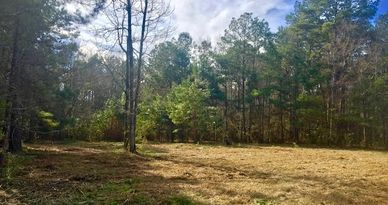 77.83 AC IN AMITE COUNTY HARDWOOD HUNTING PROPERTY WITHIN WALKING DISTANCE OF HNF