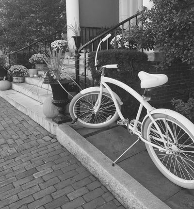 Black and white bicycle by steps literary