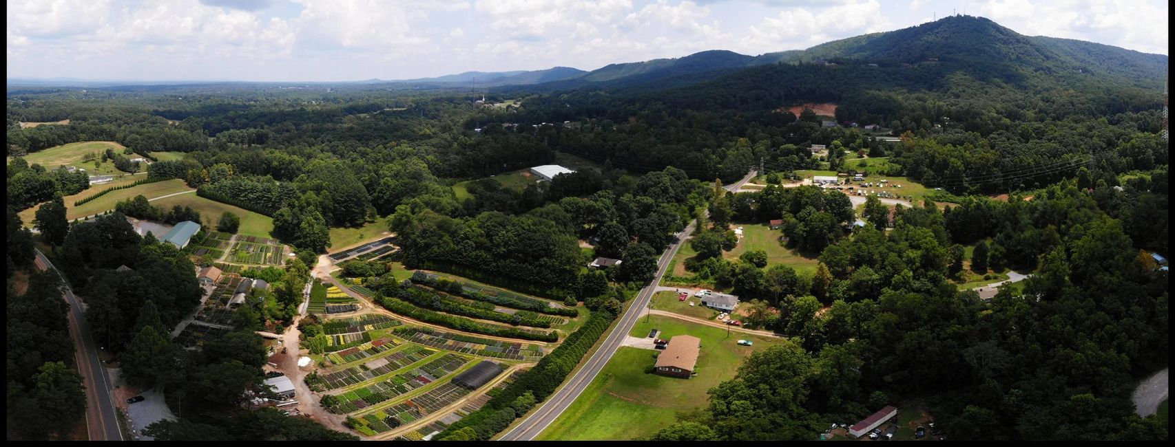 Drexel rd, Burke County, Plant Nursery, Flowers, Shrubs, Trees, Annuals, Perennials, Landscaping