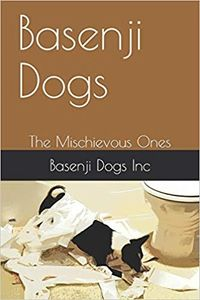 Basenji Dogs, The Mischievous Ones