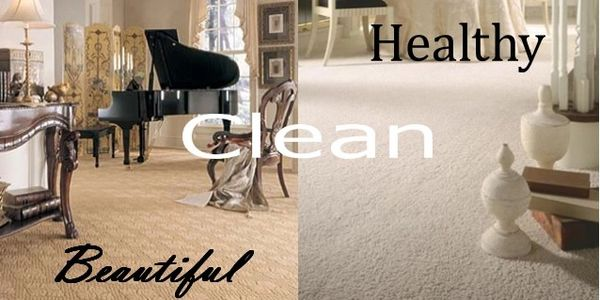 professional carpet cleaning san rafael, steam carpet cleaning san rafael  carpet cleaning novato