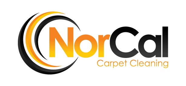 professional Carpet Cleaning in Marin County