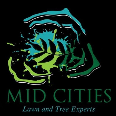 Lawn and Tree Experts
