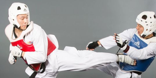 Sky Martial Arts kids adults Taekwondo self-defense family health activity Dublin Pleasanton school