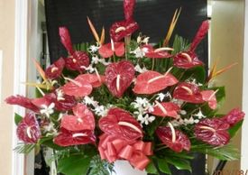 Gay Wedding Florist Hawaii, Gay Event Florists Waikiki, Gay Event Florists Oahu, Gay Florist, LGBTQ