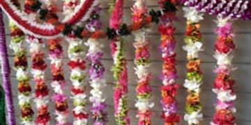 Sophia's Lei Stand, Waikiki Lei's, Honolulu Airport Leis, Gay Lei Stand, Best Lei's, Cheap Lei's