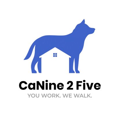 CaNine 2 Five