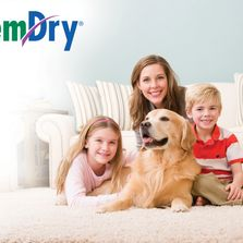 Family and pet dog sitting on clean carpet in front of a clean sofa and smiling at the camera.