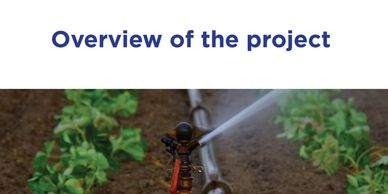 Lockyer Valley and Somerset Water Collaborative overview of the project irrigation in field