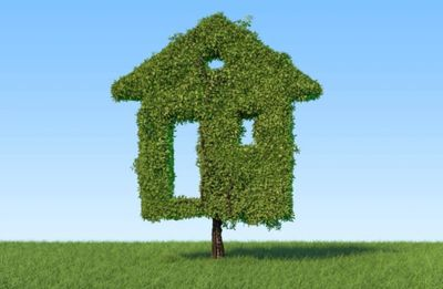 Government Green Home Grant