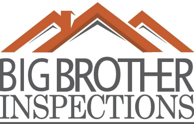 Big Brother Inspections