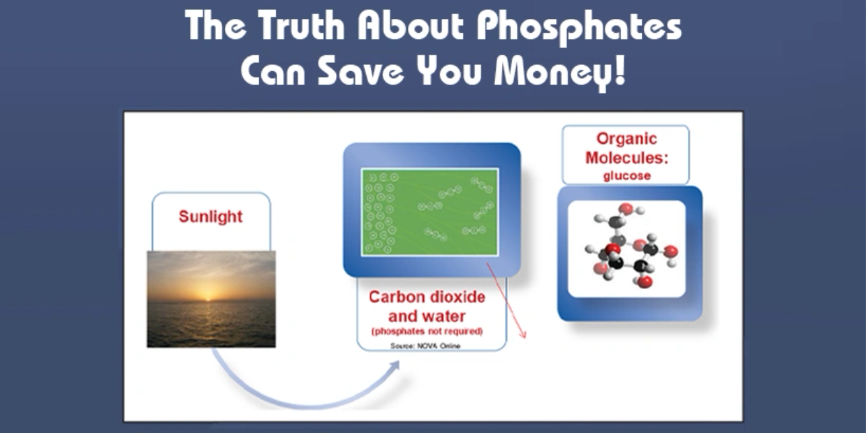 The Truth About Phosphates Can Save You Money!