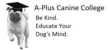 A-Plus Canine College