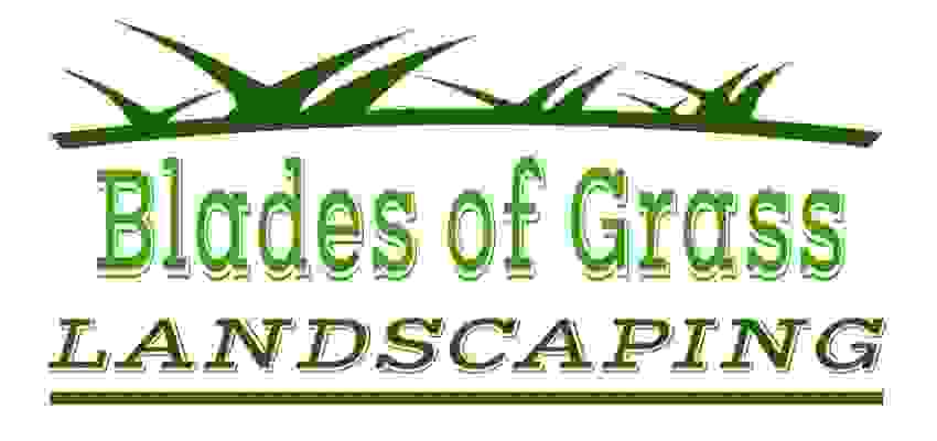Blades of Grass Groundworks