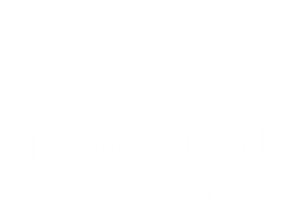 Natural Path Energy & Wellness