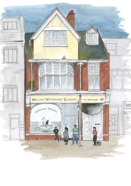Midland Veterinary Surgery Leyton pen and watercolour urban sketch