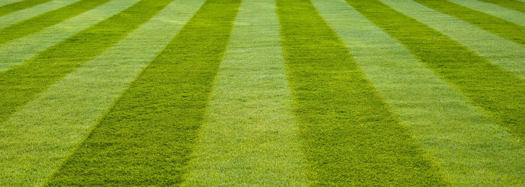 Lawn Maintenance, Lawn Mowing, Lawn Care, Yard, Grass Cutting