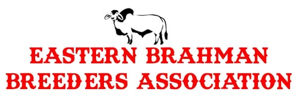 Eastern Brahman Breeders Association