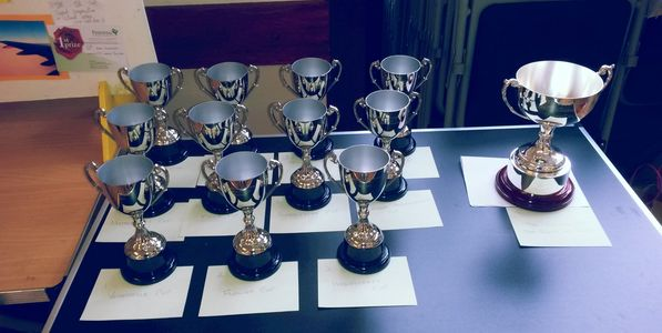 A selection of cups for winners at our Annual Show to be held 1st September