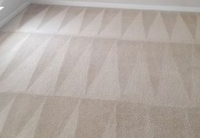 Universal Carpet Cleaning Home