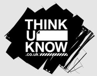 Think U Know website