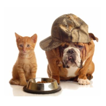 Pet food solutions