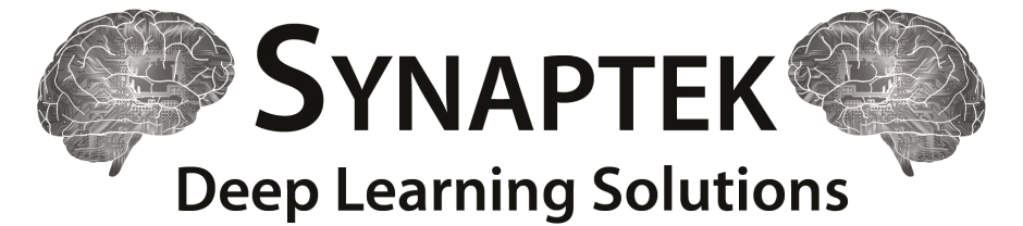 Synaptek -Deep Learning Solutions