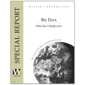 Big Data, The Real Cost - WinterCorp Special Report cover image