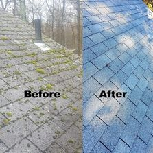 Ugly Roof Doctor,Roof cleaning,Roof preservation,Ugly roof,Ugly streaks,Ugly stains, Lichen, Moss,