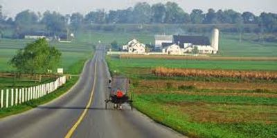 Amish horse and buggy in scenic Lancaster County farmlands
