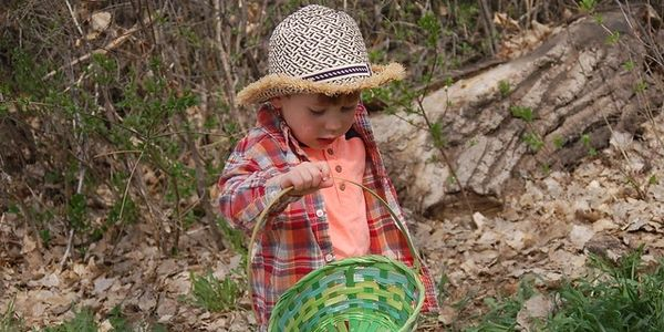 A pre-schooler wearing a hat holds a green Easter basket as he looks for Easter eggs at Ketring Park in LIttleton.