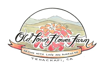 Old Town Flower Farm