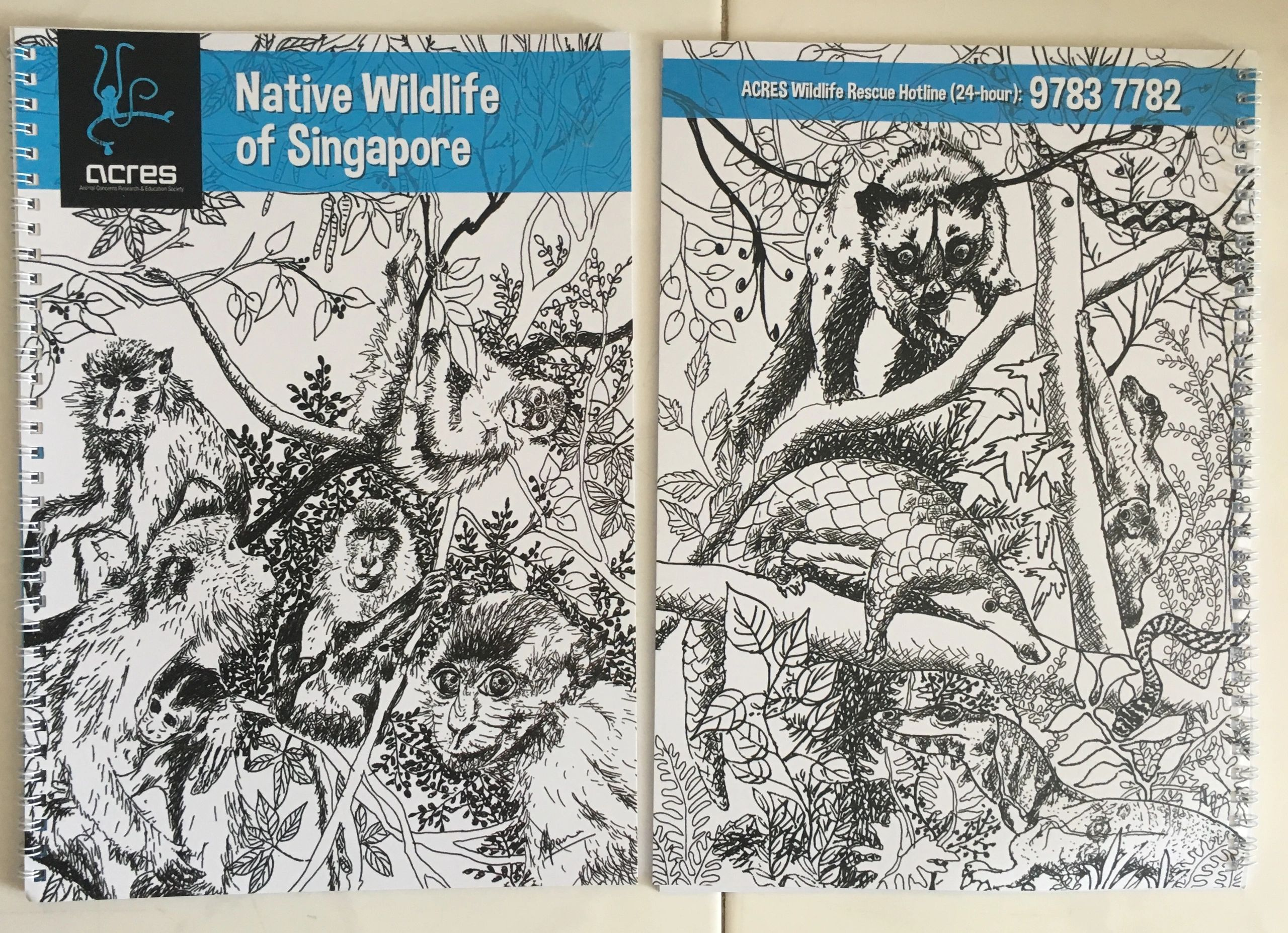 "{""blocks"":[{""key"":""bltna"",""text"":""Native Wildlife of Singapore (2016). Created in the Chinese year of the monkey, dedicated to the precious wildlife of Singapore's rainforests. A note book with an art activities for ACRES Singapore."",""type"":""unstyled"",""depth"":0,""inlineStyleRanges"":[{""offset"":0,""length"":29,""style"":""BOLD""}],""entityRanges"":[],""data"":{}}],""entityMap"":{}}"