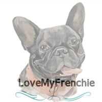 Lovemyfrenchie