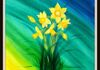 Spring Daffodils by Brandie