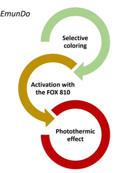The EmunDo Effect: Selective coloring, Activation with the FOX 810 laser, Photothermic effect.
