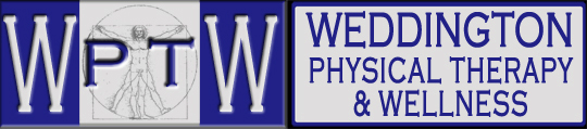 Weddington Physical Therapy and Wellness