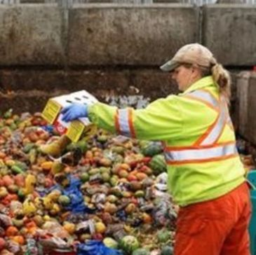 Food waste, compost, landfill, hunger, Food Connection