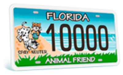 Florida Animal Friends License Plate