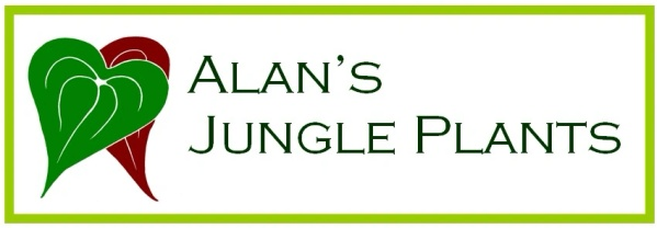 Alan's Jungle Plants