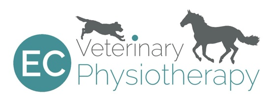 EC Veterinary Physiotherapy