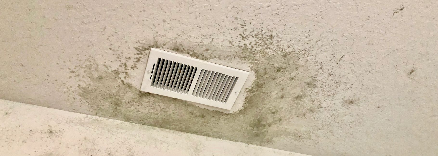 air quality testing, iaq, mold testing, black mold, how do i tell if i have mold