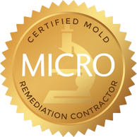 IICRC Micro Certified Mold Remediation Contractor, IICRC Micro Certified Black Mold Remediator