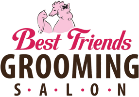 Best Friends Grooming Salon, Bellevue